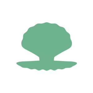 oyster shell icon