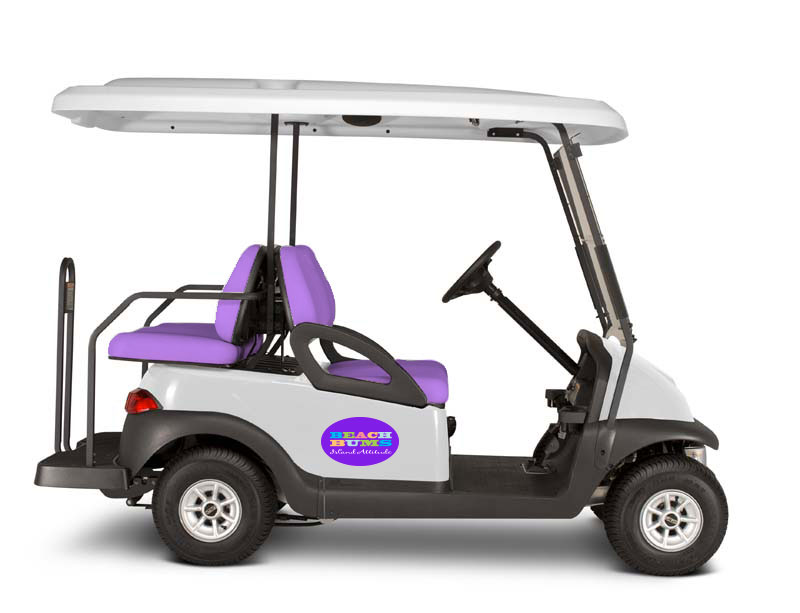 4 seat golf cart rental anna maria island view image