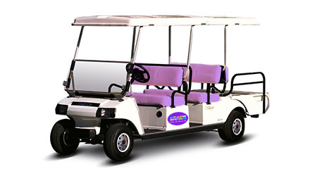 6-8 Seat Golf Cart Rental Anna Maria Island