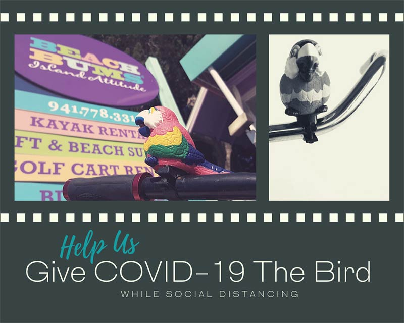 Help Us Give COVID-19 The Bird